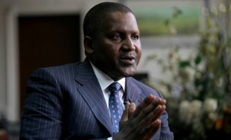 Dangote: I want to be Africa's biggest philanthropist