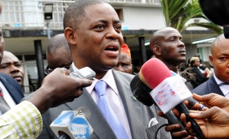 Police invite Fani-Kayode over 'inciting publication'