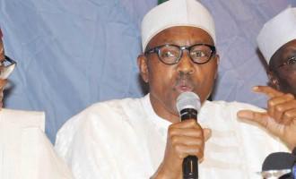 I'll make naira equal to dollar, says Buhari