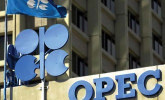 Crude oil prices unstable as markets anticipate increased OPEC output