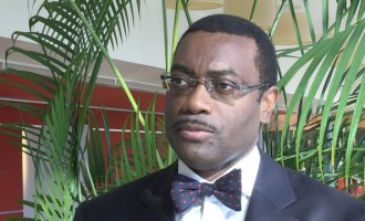 Buhari lobbies for Adesina as ADB President