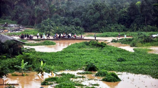 Flood destroys 120 houses, farms in Jigawa