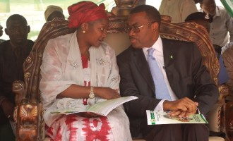 Jonathan fires petroleum fund boss, Kasali