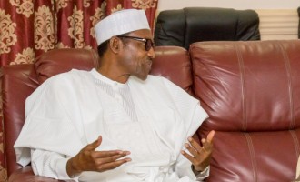 Buhari happy with centenary city project