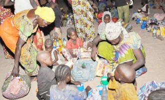 Ex-B'Haram victims responding well to counselling, says UNFPA