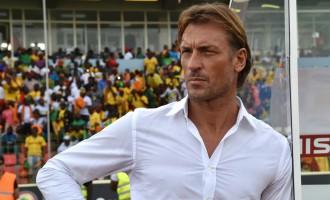 Renard quits Cote d'Ivoire job