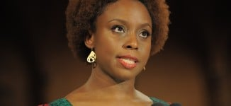 Chimamanda: I'm an ambassador of myself… I don't represent Nigeria