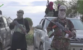 40 killed as Boko Haram raids Borno villages