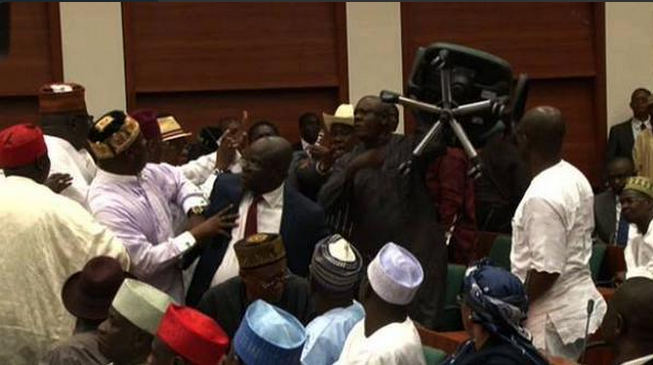 VIDEO: House of reps in free-for-all, mace seized