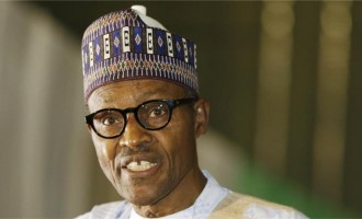 I will review Amnesty's report, says Buhari