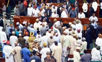 Reps exchange blows as Elumelu emerges minority leader
