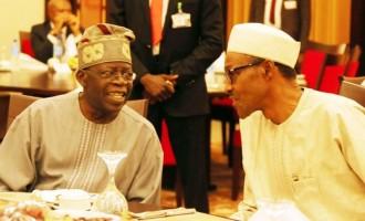 I've not asked Buhari for anything, says Tinubu
