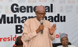 Buhari 'to continue' with privatisation