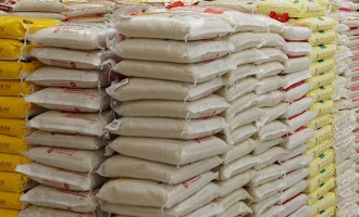 Osinbajo: We'll stop importing rice by 2019