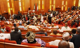 Division in senate over amendment of CCB Act