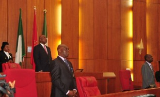 Senate postpones plenary, ministerial screening