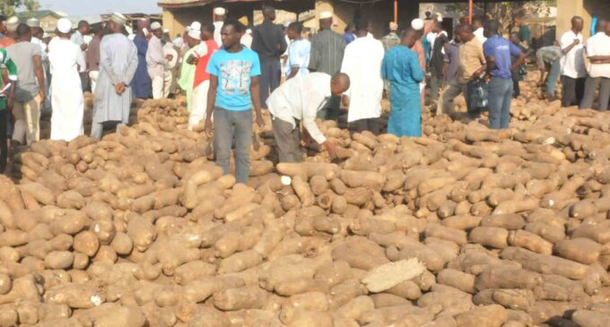 Nigeria to export 5,760 tonnes of yams in 2018