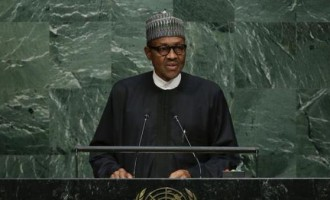 Repatriate stolen funds, PMB begs world leaders