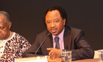 Sani: Fayose suffering from political depression