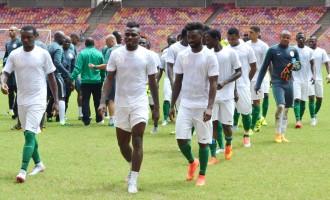 Oliseh: Only Nigeria is irreplaceable
