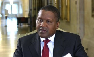 Dangote asks FG to reverse privatisation of power