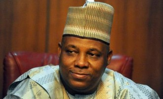 Borno to construct schools for children orphaned by Boko Haram