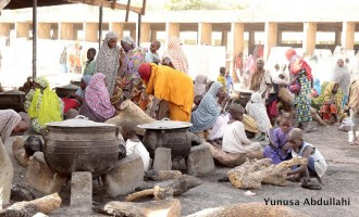 1,000 female IDPs employed as 'street vanguards' in Borno