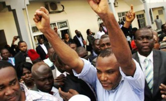 Court orders DSS to release Kanu