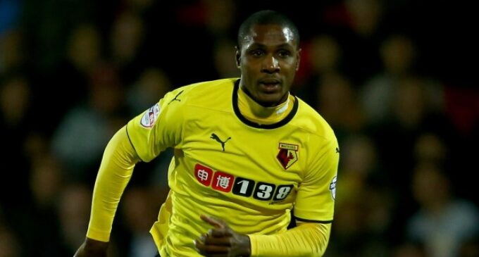 Ighalo nets 14th goal, but Watford lose to Tottenham