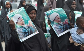 On final day of ultimatum, Amnesty asks FG to release El-Zakzaky 'now'