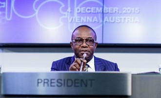 Kachikwu: Save your fuel, I will NOT resign