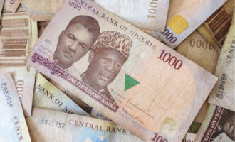 FAAC shares N682.06bn allocation for August — highest in five months