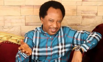 APC insists on Shehu Sani, says 'el-Rufai can't dictate to us'