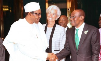 IMF on CBN's new FX policy: Let's wait and see