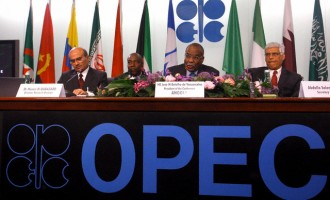 OPEC records highest level of cut compliance