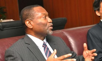 FG anticipates GDP drop ahead of 2019 presidential election