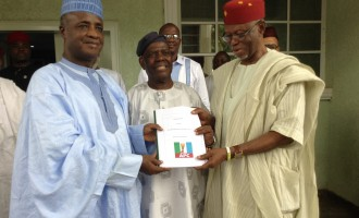 APC constitution translated into 3 languages