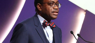 AfDB: We'll soon give credit to institutions based on their loans to women