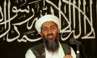 Bin Laden kept $29m for jihad