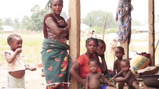 STAT: Herdsmen killing more than Boko Haram