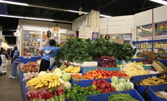 Africa will feed the world by 2025, says AfDB