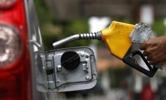 No plans to increase fuel price, says senate