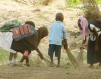 FG calls for more proactive measures to eliminate child labour