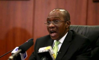 Emefiele backs Osinbajo, says CBN not floating the naira