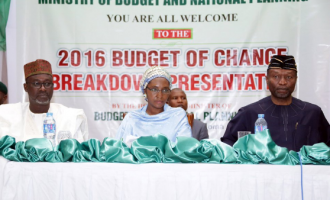 FG releases N25bn for social investment programme