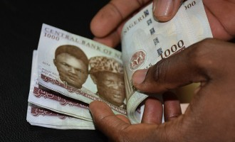 Naira gains, NSE jumps by N577bn after CBN rate decision