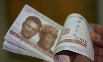 Naira takes a fall again, trades at 485/$1, 600/£1