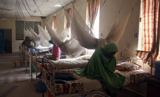 Nigeria has '20,000 new cases of fistula annually'