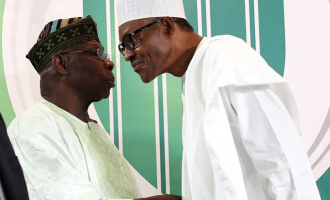 Obasanjo: No single person can take glory for Buhari's election