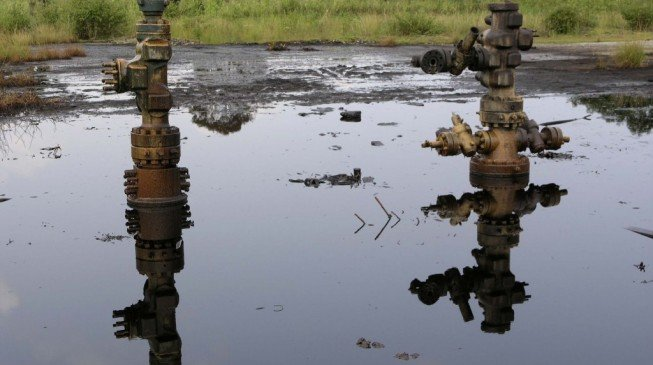 Buhari to launch Ogoni land clean-up June 2